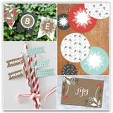 Berry Kraft Party Decor