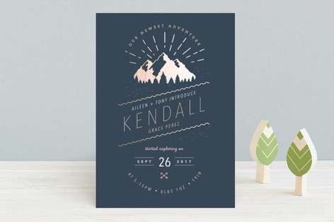 Our Newest Adventure Foil-Pressed Birth Announcements