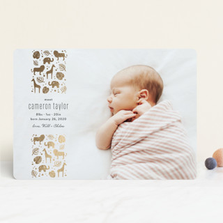 Safari Foil-Pressed Birth Announcements