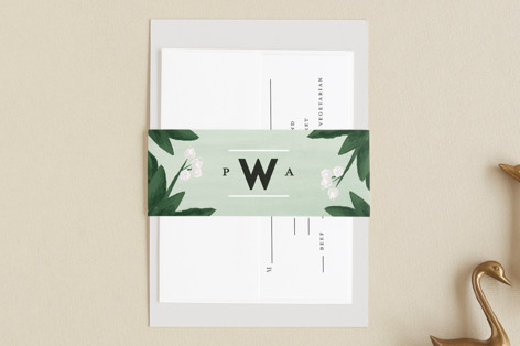 Botanical Name Plate Belly Bands