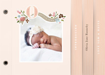 Fairy Tale Beginnings Birth Announcement Minibook&amp;trade; Cards