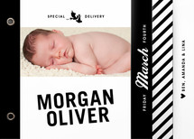 Vintage Label Birth Announcement Minibook&amp;trade; Cards
