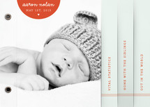 Modern Tiny Heart Birth Announcement Minibook™ Cards