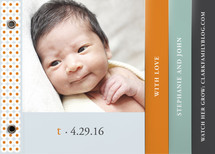 Oh-So-Mod Birth Announcement Minibook&amp;trade; Cards