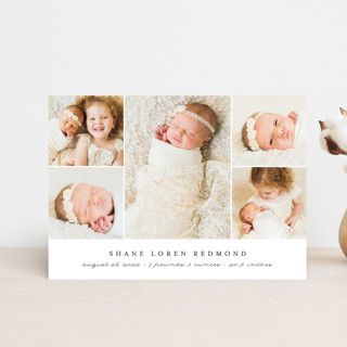 Classically Modern Birth Announcement Petite Cards