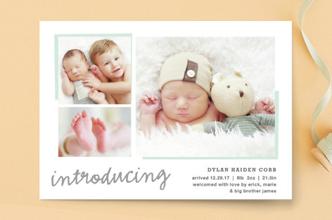 All The Details Birth Announcement Petite Cards