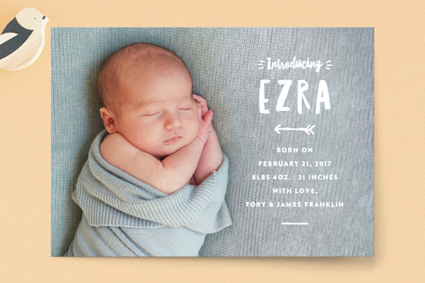whimsical intro Birth Announcement Postcards