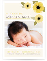 New Born Poppy Birth Announcement Postcards