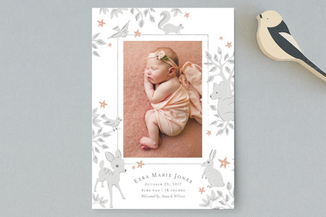 Folk Tale Birth Announcement Postcards