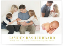 Sweet Grid Birth Announcement Postcards