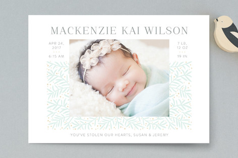 Branching Out Birth Announcement Postcards