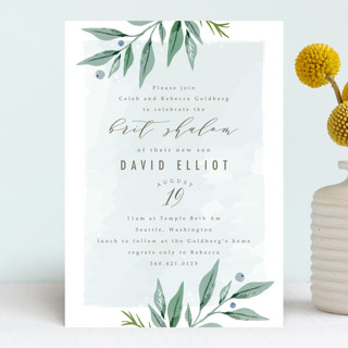 soft branches Bris and Baby Naming Invitations