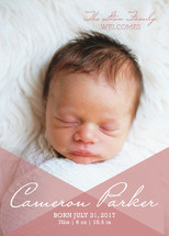 Overlay Love Birth Announcements By Jessie Steury