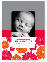 Darling Dahlias Birth Announcements
