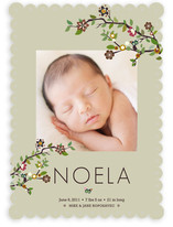 Tree Branch Birth Announcements