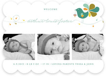 Little Bird Birth Announcements