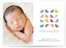 Colorful Birdies Birth Announcements