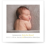 Simple Introductions Birth Announcements
