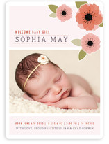 New Born Poppy Birth Announcements