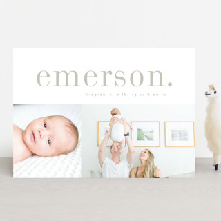 Little Editor Birth Announcements