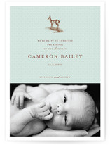 Our Dear Birth Announcements