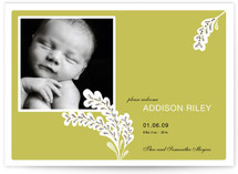 Simple + Lovely Birth Announcements