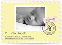 Special Delivery Birth Announcements