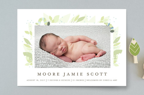Little Caterpillar Birth Announcements