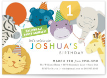 Safari Party Animals Children's Birthday Party Invitations