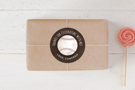 Baseball Birthday Children's Birthday Party Stickers