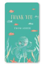 Birthday Fishes by Hallie Fischer