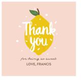 Lemonade Fun by Joanne James