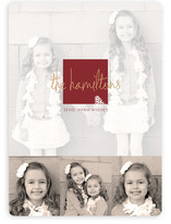 Frosted Pinecone Christmas Photo Cards