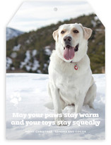 Frosty Paws Christmas Photo Cards