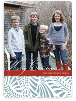 Feliz Christmas Photo Cards