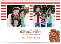 Stripes and Pine Christmas Photo Cards