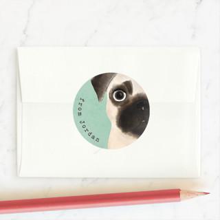 Pugs and kisses Custom Stickers