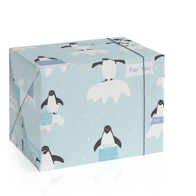 Presents from Penguins by Jennifer Holbrook