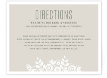 White Shadows Directions Cards