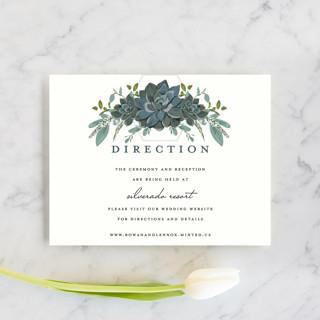 Echeveria Direction Cards