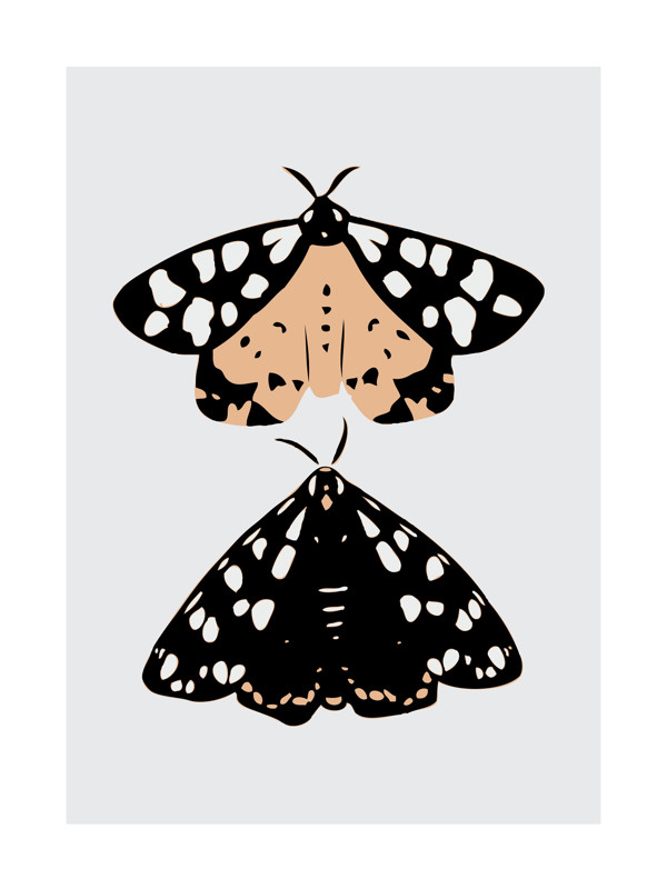 http://www.minted.com/product/domino-art-prints/MIN-XK6-DNA/on-moths-wings?ccId=331063&org=title