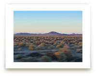 Desert Twilight by Melanie Pavao