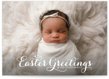 Sophisticate Landscape Easter Cards