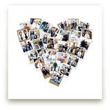 Heart Snapshot Mix®