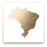 Brazil Map by Jorey Hurley
