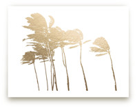 Palm Trees in the Wind Foil