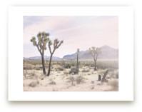 Joshua Tree No. 10 by Wilder California