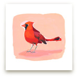 Inquisitive Cardinal