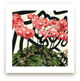 Abstract Orchids by Michelle S.