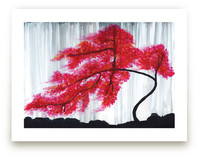 Cherry Blossom Tree Art Prints